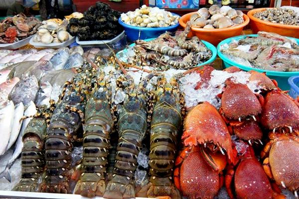 Hải sản đa dạng tươi ngon